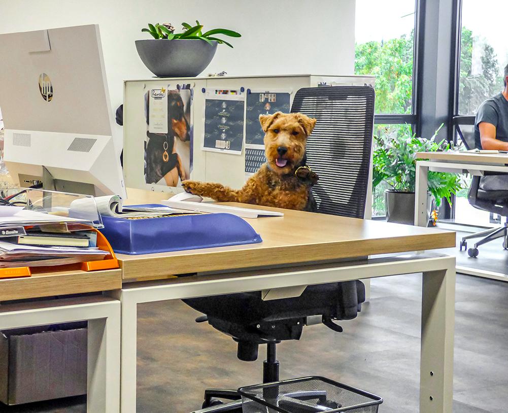 Oliver- kantoor Renske